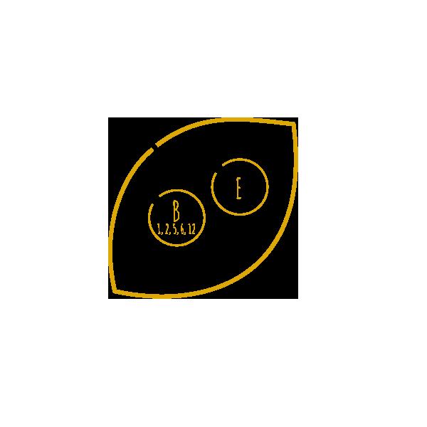 VITAMIN-E-B-kleiner