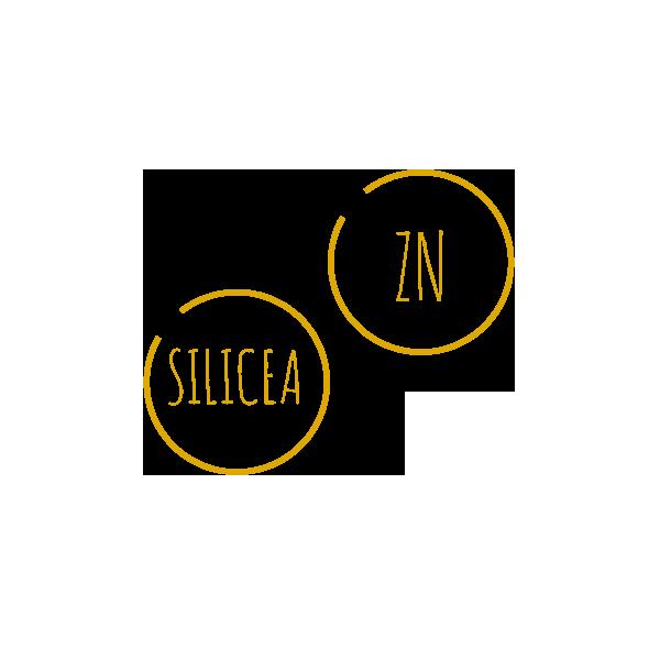 Zink-Silicea